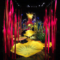 The Mille Flori installation from view from the room entrance. Chihuly Garden and Glass