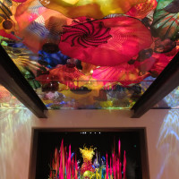 The Chihuly Persian Ceiling Installation