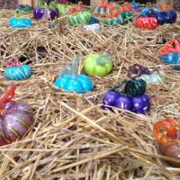 Molten Spirit Glass Studio Glass Pumpkin Patch